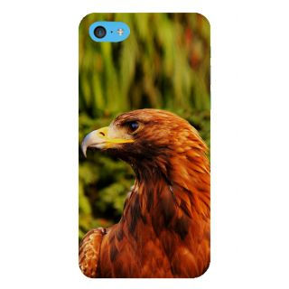 Snapdilla Simple Design Green Background Eagle Hd Photo Mobile Pouch For Apple IPod Touch 6