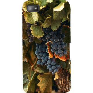 Snapdilla Nature Lovers Black Hanging Grapes Hd Photo Mobile Pouch For BlackBerry Z10
