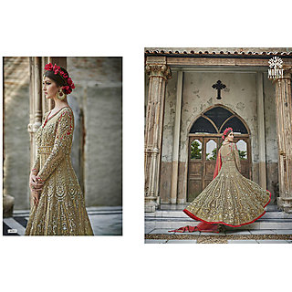 Salwar Soul Designer Beige Net Embroidery Bollywood Suits
