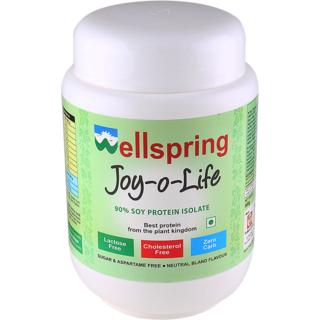 Wellspring Joy-O-Life 600gm