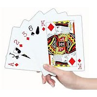 Plastic Playing Cards (Pack Of 2)