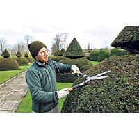 Garden Hedge Cutter Grass Lawn Bush Shearer Cutter Garden Cutter Garden Trimmer