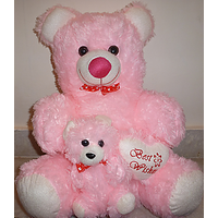 18 Inch Pink Teddy Bear With Little Baby And Little Heart