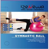 Renewa Anti Burst Gym Ball With Foot Pump 100Cm (Silver)
