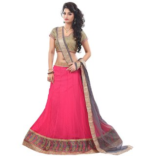 Anu Clothing Womens Net Lace Lehenga Choli