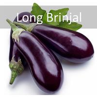 Long Brinjal Vegetable Seeds | Free Shipping