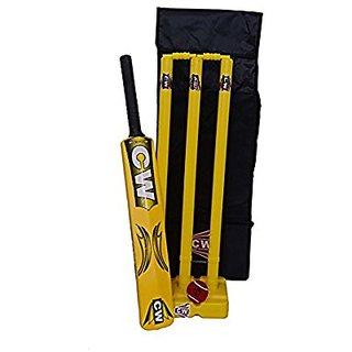CW Cricket Set in Plastic (Large)