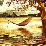 Wall Decor Hammock On A River Landscape Printed Canvas