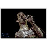 Queen Singer Freddie Mercury Poster By Artifa