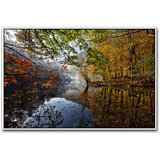 Beautiful River In Green Forest Poster By Artifa