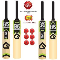 Gas  Kashmir Willow Cricket Bat SH Size