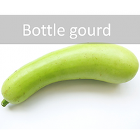 Bottle Gourd Vegetable Seeds | Calabash | Free Shipping [CLONE]