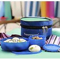 Tupperware Classic Lunch Box