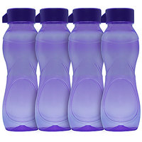G-PET Iceberg BPA Free Fridge Water Bottle 500 Ml Purple - Set Of 4