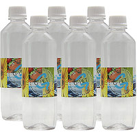 G-PET Water Bottle Mint 500 Ml - Set Of 6