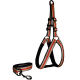 Petsplanet Premium Quality Harness With Soft Padding - Golden & Red ( LARGE )