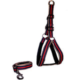 Petsplanet Premium Quality Harness With Soft Padding -RED, BLUE GOLDEN( LARGE)