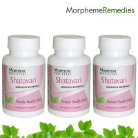 Morpheme Shatavari Supplements For Female Health - 500Mg Extract - 3 Combo Pack