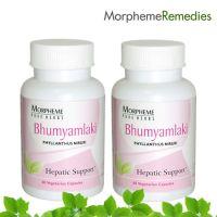 Morpheme Bhumyamalaki Supplements For Liver Disease & Fatty Liver(Option 1)