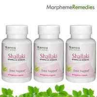 Morpheme Shallaki (Boswellia) Supplements For Arthritis & Joint Pain