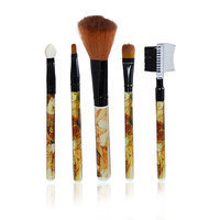 Imported Make up Brushes (5 in 1)