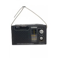 Seetone Rechargeable Modern Multimedia with USB/AUX/Card Reader and Remote FM Radio  (Black)