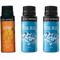 Park Avenue  Deo - 150 Ml (For Men)