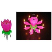 Musical Flower Birthday Party Candle ( Shop Clues Offer Along With This Get 1 Small Candles 1 Box Free )