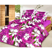 Zigma Collections Color Of Dream 100% Cotton Double Bedsheet - 5016032