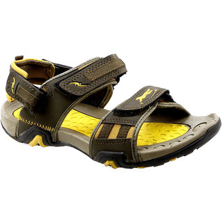 Tomcat Mens Multicolor Velcro Sandals