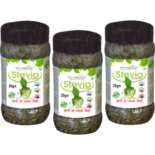 Zindagi Stevia Dry Leaves - Natural Stevia Leaves - Pure Sugarfree Sweetener (Pack Of 3)