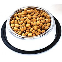PETS EMPIRE -Stainles Steel Non Skid Dog Feeding Bowl  550ml Pet Feeder