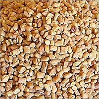 BEST QUALITY FENUGREEK SEEDS (Methi) - 100 GM