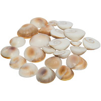 Gomti Chakra For Curing Problems (Pack Of 10 Pieces)