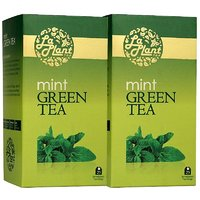 LaPlant Mint Green Tea - 50 Tea Bags (Pack Of 2)
