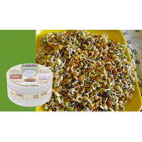 Sprout Maker With 3 Compartments - 5896210