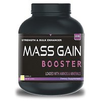 Mass Gain Booster 1 - 5857320