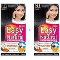Bigen Easy 'n Natural Hair Color N1 Natural Black Pack Of 2