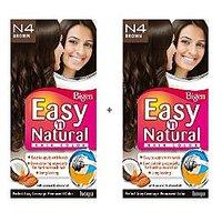 Bigen Easy 'n Natural Hair Color N4 Brown Pack Of 2