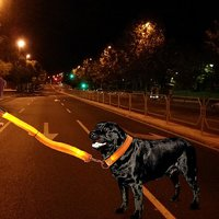 LED Dog Collar And LED Dog Leash