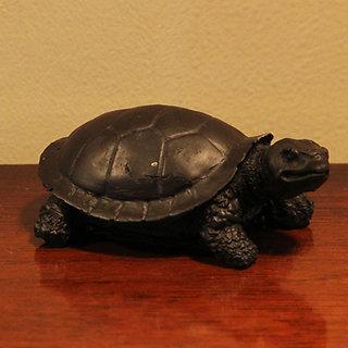 Feng Shui Lucky Turtle
