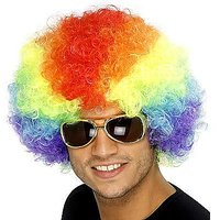 Rainbow Party / Cricket Wig, Multi Color Hair Costume Clown Afro Wigs Prank