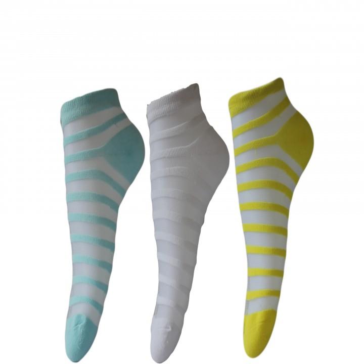 Narang Sons Womens Striped Quarter Length Socks