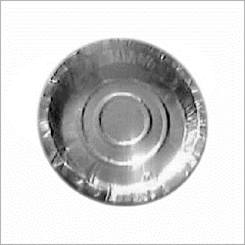 Parmar Industries Silver paper plates