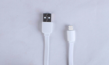 Step3 1.5 metre flat lightning cable