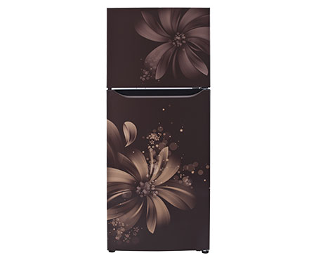 LG GL Q282SHAM 255 Litres Double Door Frost Free Refrigerator  Hazel Aster