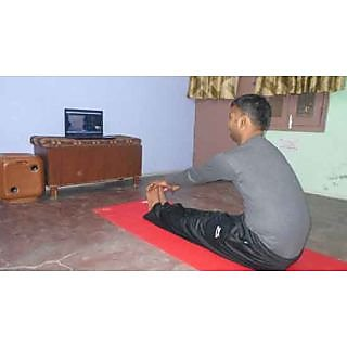 Yoga Training Online Group Classes For 2 Students- 12 Skype Yoga Lessons Program
