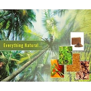 COCO PEAT Organic Soil Substitute For Garden, Pots, Planters In 100 Gm Pack