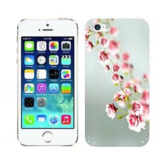 Trilmil Premium Design Back Cover Case for Apple Iphone 5 PRTi5A01734