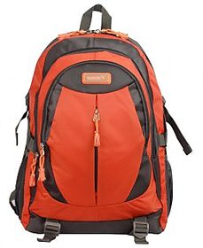 Safari Chase Grey-Orange Laptop Backpack